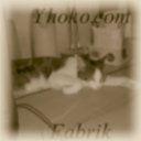 Das WG-Leben bei Yhoko.com